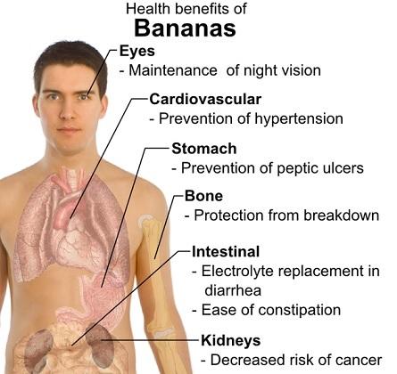 tropische vruchten banaan gezondheidsvoordelen