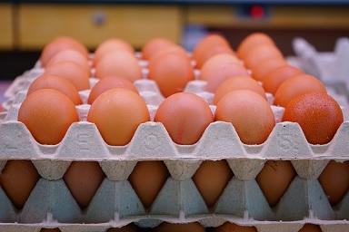 eten bewaren eieren