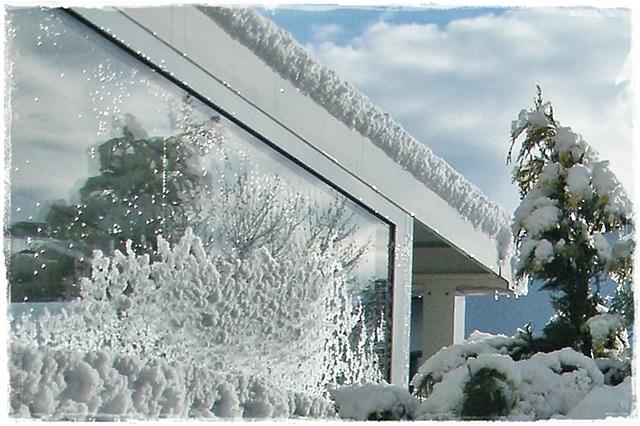 tuinkamer hele jaar genieten van de tuin winter