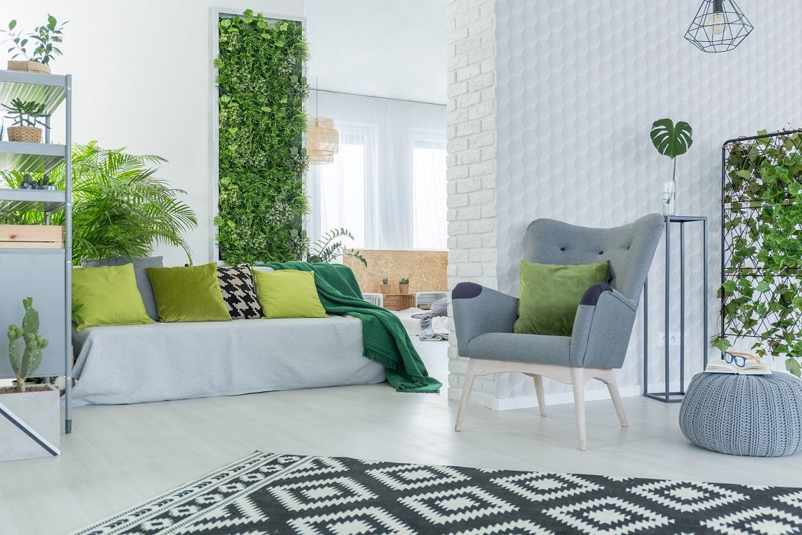 top 10 makkelijk te houden kamerplanten