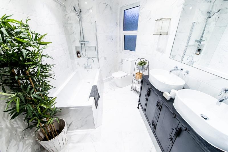 Welke planten zijn geschikt voor de badkamer - tipsvoorjou.com
