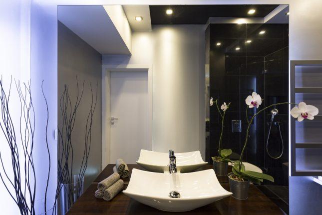 welke planten zijn geschikt voor de badkamer