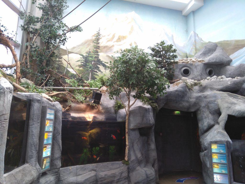 uittip vakantie sealife oberhausen 12