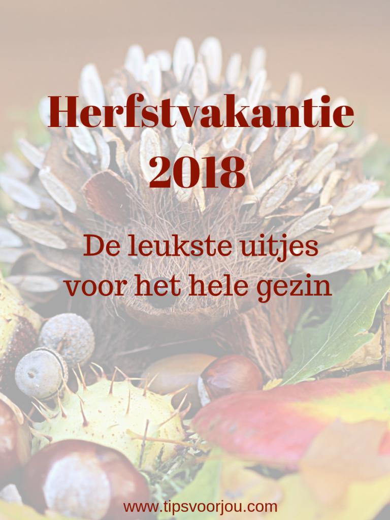 Herfstvakantie 2018 de leukste uitjes voor het hele gezin