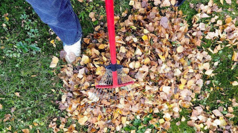 Met deze tips maak je de tuin winterklaar