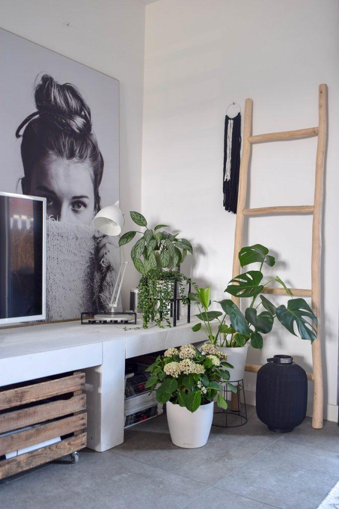 Tips om een hoekje in huis gezelliger te maken 3