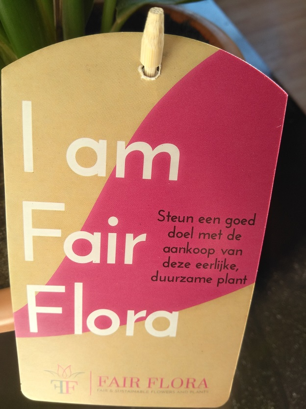 Meer groen met Fair Flora eerlijke bloemen en planten 5