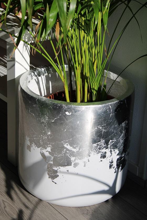 Bloempotten en plantenbakken als blikvanger in huis, tuin en op kantoor bloempot