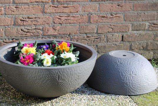Bloempotten en plantenbakken als blikvanger in huis, tuin en op kantoor schalen met bloemen