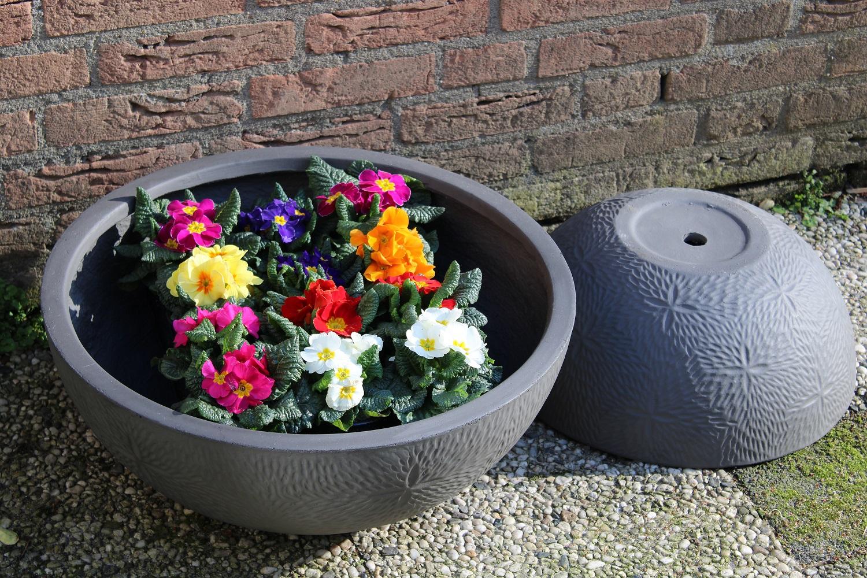 Bloempotten en plantenbakken als blikvanger in huis, tuin en op kantoor schalen