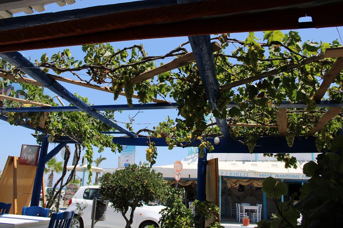 Tips voor lekkere en betaalbare restaurants op Kos Nostos restaurant terras