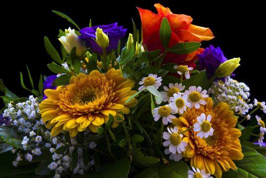 Bloemen en hun betekenis