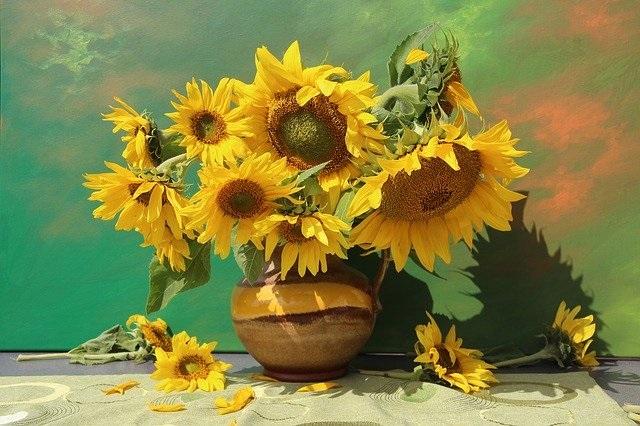 Bloemen en hun betekenis zonnebloem