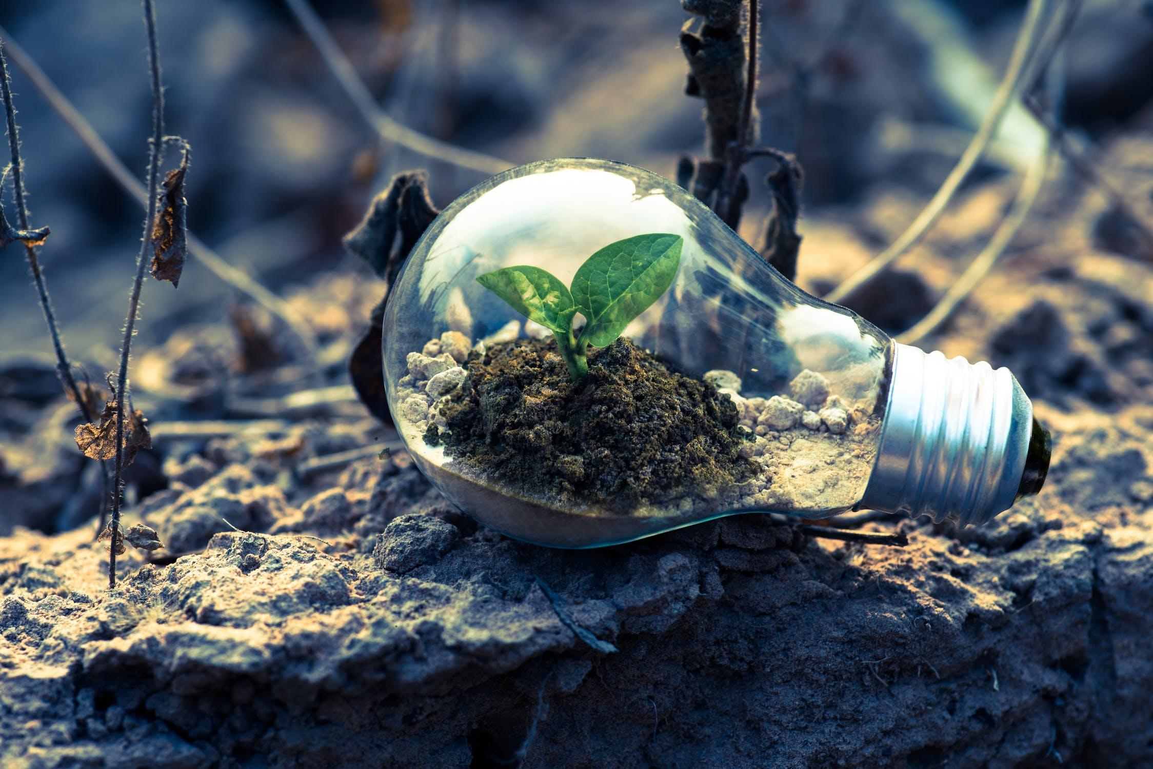 Vijf tips om energieabonnementen te vergelijken