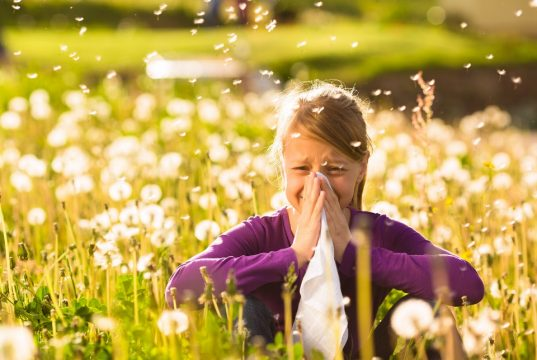 Huismiddeltjes tegen hooikoorts en allergie