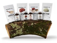 De nieuwste gezondheidstip Cordyceps paddenstoelen