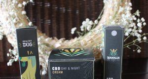 Zamalia-Experience CBD producten die een gezonde levensstijl ondersteunen