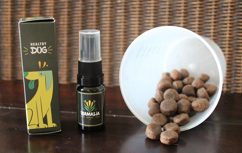Zamalia-Experience CBD producten die een gezonde levensstijl ondersteunen CBD honden