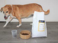 Buddybites hondevoer op maat voor je trouwe viervoeter