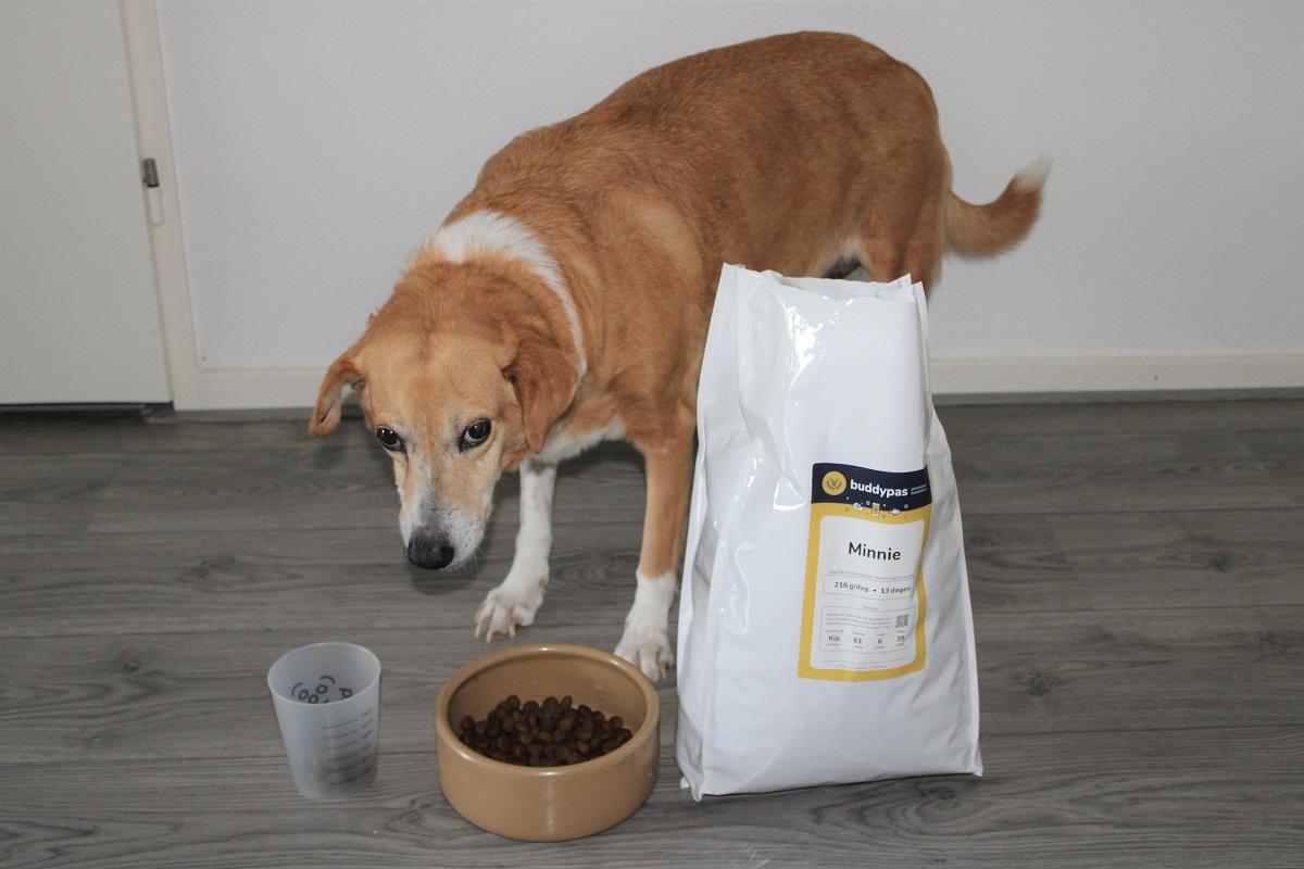 Buddybites hondevoer op maat voor je trouwe viervoeter minnie