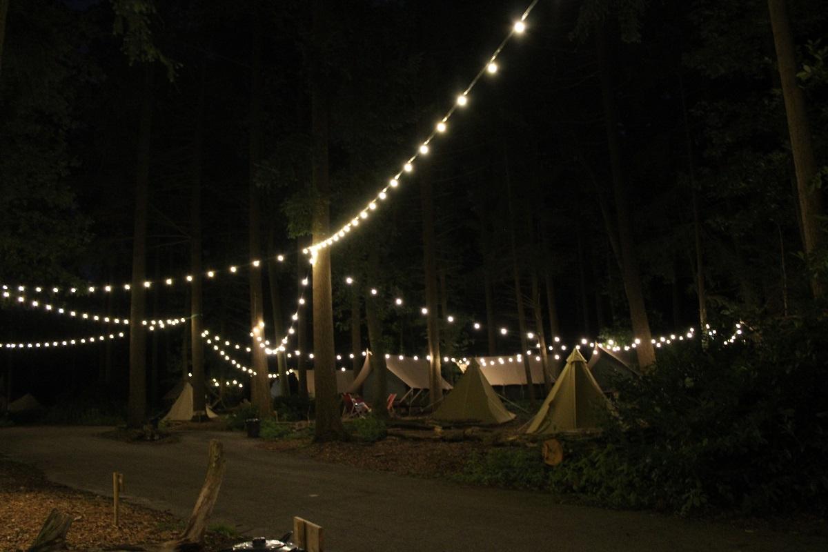 Burgers' Zoo Camp overnachten in de dierentuin camping in de nacht