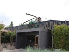 Lekker eten en vermaak voor de kinderen bij BamBoo Beach Club in Ahaus